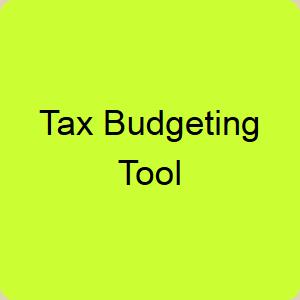 Tax-Budgeting-Tool